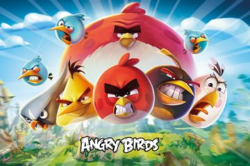Angry Birds - Group Landscape