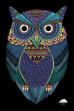 MICHAEL THE MAGICAL OWL