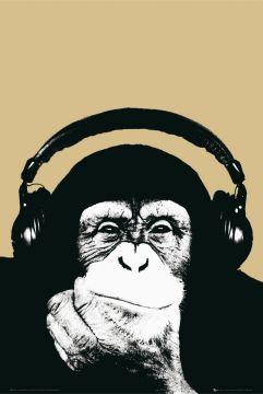 Steez - Monkey