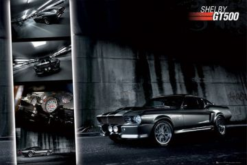 Ford Shelby Mustang GT500s