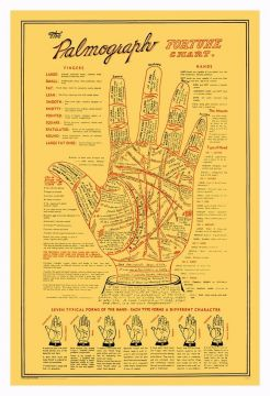 Palmograph