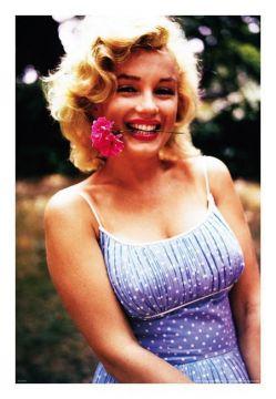 Marilyn Monroe - Flower Overlay