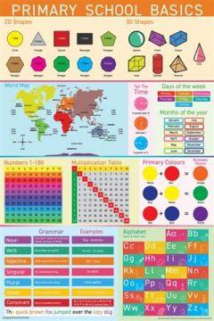 PRIMARY SCHOOL BASICS