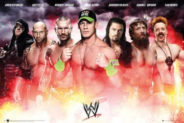 WWE - COLLAGE 2014